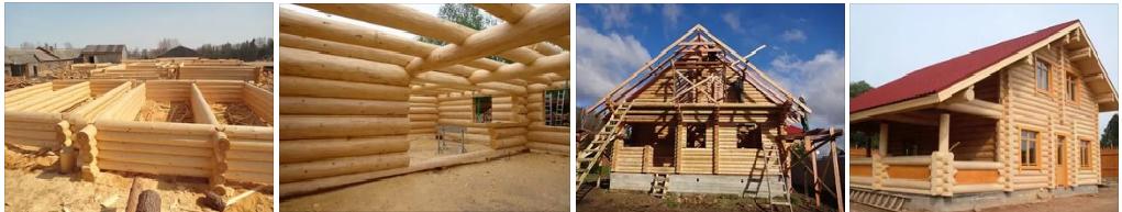 Строительство срубов в Рязани и области